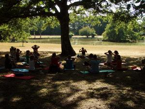 Qi gong dans le parc